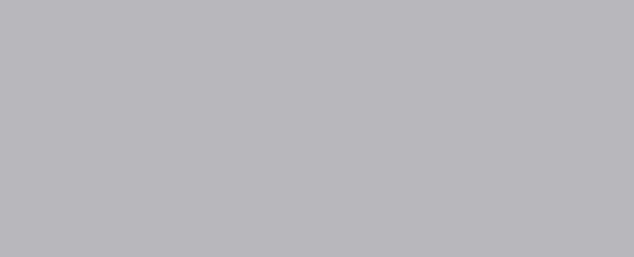 REALITY Gris 23,5x58 (bal.=1,23m2)