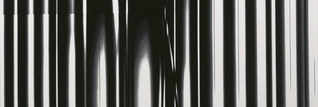 INKA odkladná keramická deska 12x35,5cm, zebra