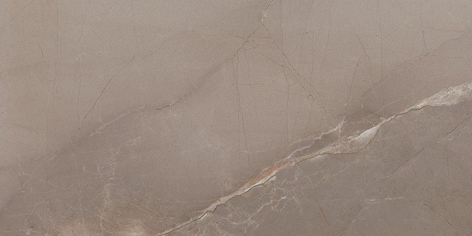 PASSION LUX 90 Taupe 45x90 (bal=1,21m2)