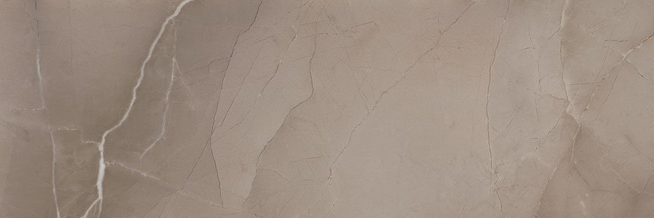 PASSION R90 Taupe 30x90 (bal=1,08m2)