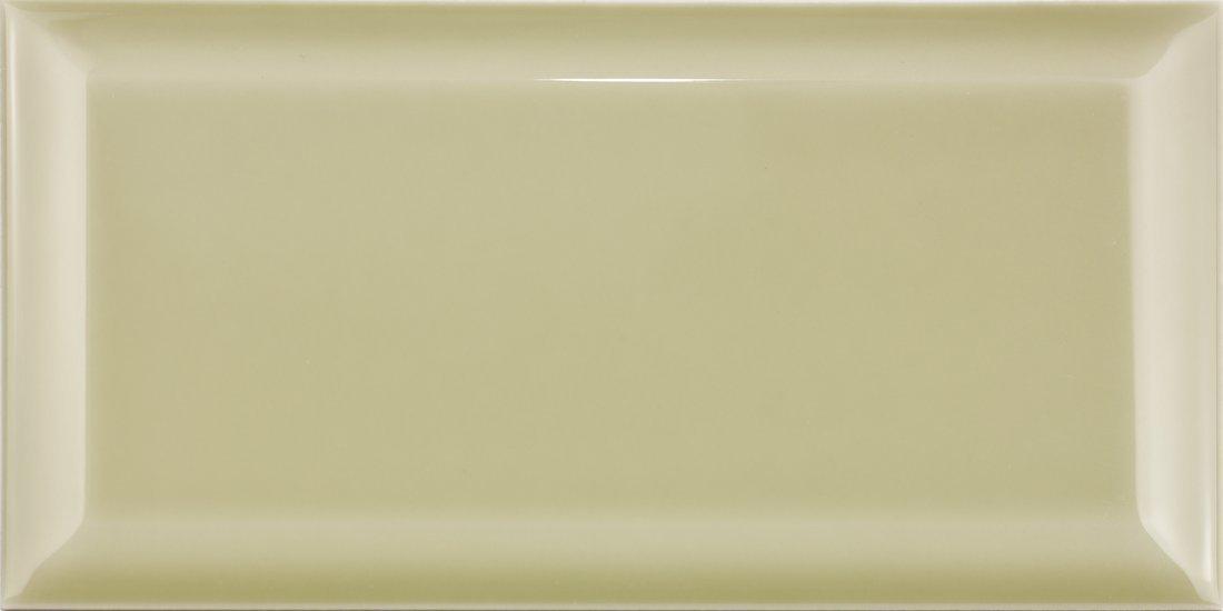 BISELADO BX Salvia 10x20 (bal=1m2)